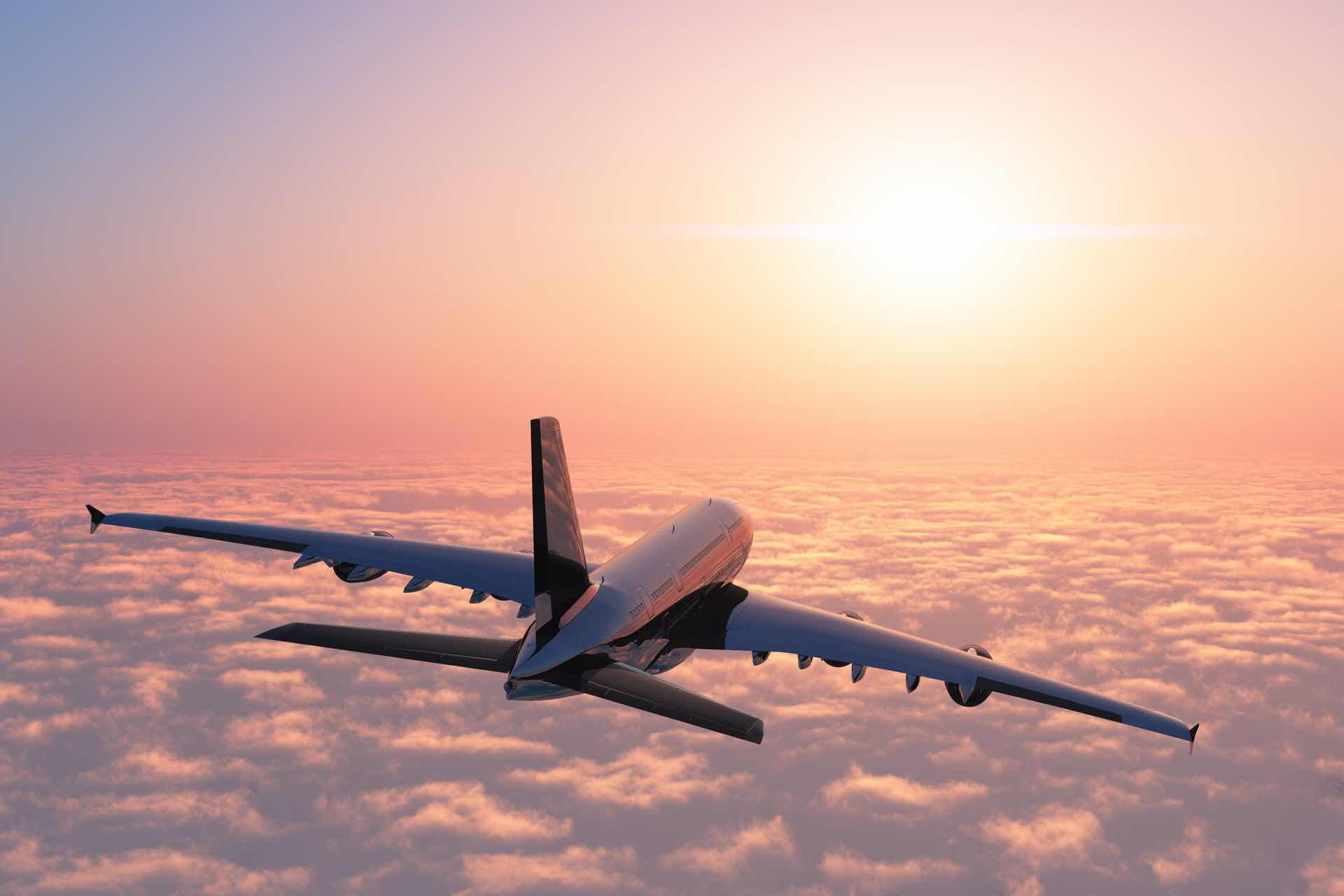 Air Rage - Violence in the Airline Industry